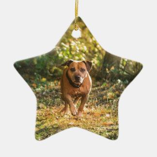 Staffordshire bull terrier ceramic ornament