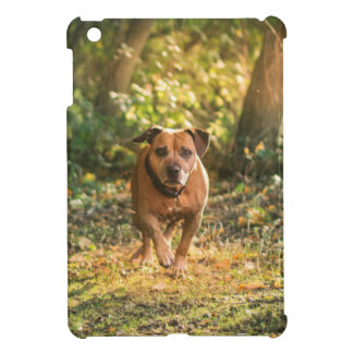 Staffordshire bull terrier iPad mini cases
