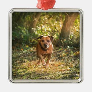 Staffordshire bull terrier metal ornament