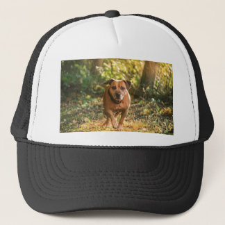 Staffordshire bull terrier trucker hat