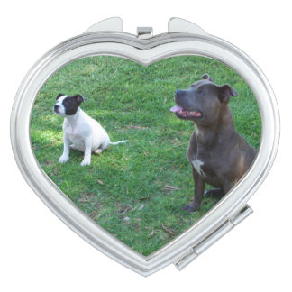 Staffys Waiting For Treats, Heart Compact Mirror