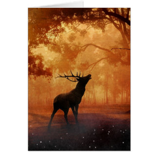 Stag at Sunset Card