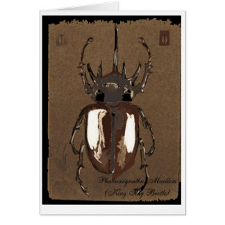 Stag Beetle Card
