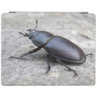 Stag Beetle iPad Cover