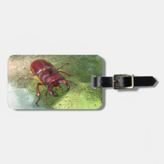 Stag Beetle ~ Luggage tag