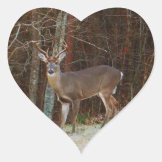 Stag Buck Deer Oak Camouflage Stickers