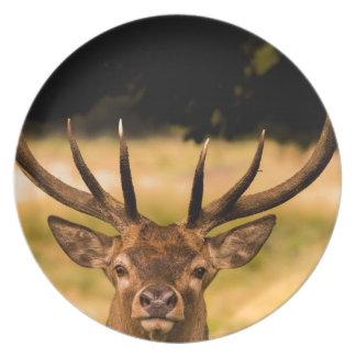 stag of richmond park plate