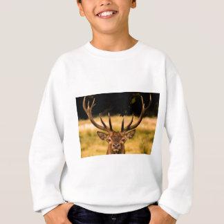 stag of richmond park sweatshirt