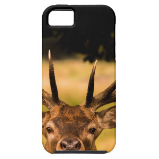 stag of richmond park tough iPhone 5 case