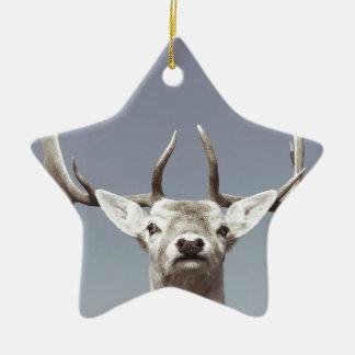 Stag prints stay Deer antlers Antlers Ceramic Star Decoration