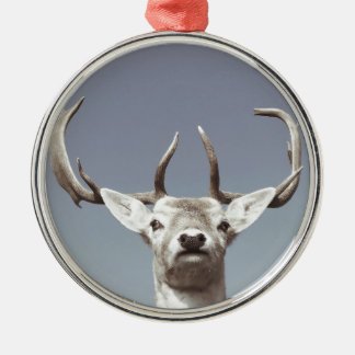 Stag prints stay Deer antlers Antlers Silver-Colored Round Decoration