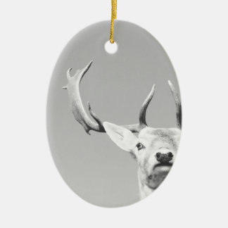 Stag prints stay Deer Ceramic Oval Decoration
