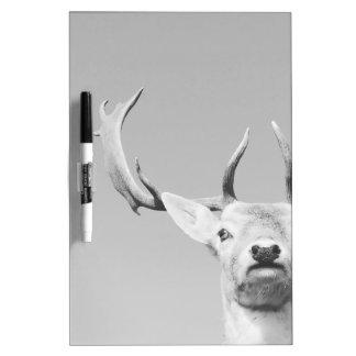 Stag prints stay Deer Dry-Erase Board