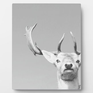 Stag prints stay Deer Plaque