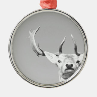 Stag prints stay Deer Silver-Colored Round Decoration