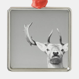 Stag prints stay Deer Silver-Colored Square Decoration