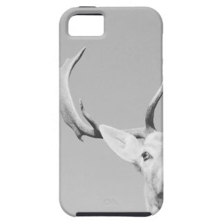 Stag prints stay Deer Tough iPhone 5 Case