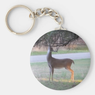 Stag Tangles Antlers Key Ring