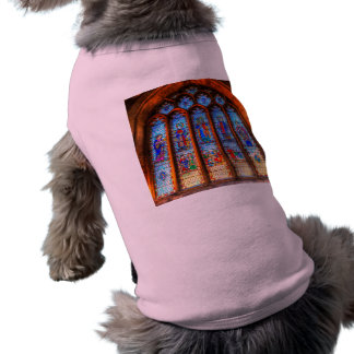 Stained Glass Abbey Window Shirt