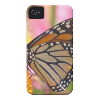 Stained Glass Wings iPhone 4 Covers