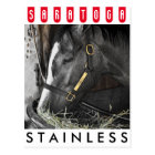 Stainless by Flatter Postcard
