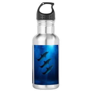 Stainless Steal Water Bottle with dolphins