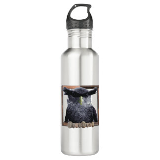 Stainless steel owl water bottle. 710 ml water bottle