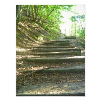 Stairs Up To The Forest Photo Print