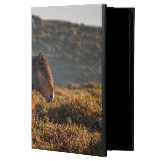 Stallion Powis iPad Air 2 Case