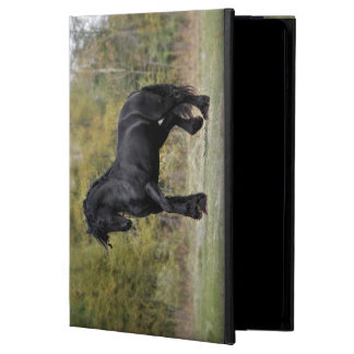 Stallion Strut iPad Air Cases