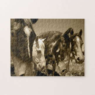 Stallions Puzzle - 10x14 252 Pieces - Fabulous!