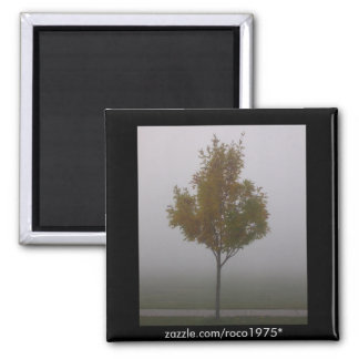 Stand Alone Square Magnet