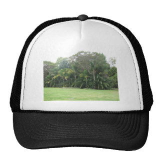 Stand Of Trees At The Maze In Bullsbrook Western A Trucker Hat
