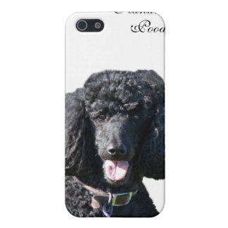 Standard Poodle dog black beautiful photo portrait iPhone 5/5S Case