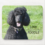 Standard Poodle dog black, photo mousepad