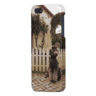 Standard Poodle iPhone5 iPhone 5/5S Cover