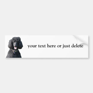 Standard Poodle on board custom bumper sticker