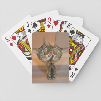standard set of index playing cards image cat and