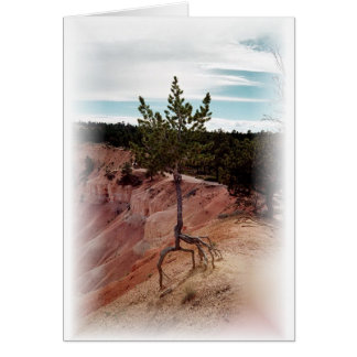 Standing Alone at Bryce Canyon Greeting Card