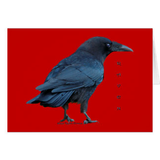 Standing Black Raven Art Collectible Cards