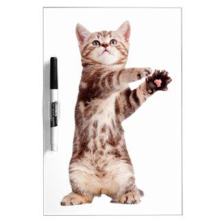 Standing cat - kitty - pet - feline - pet cat dry erase board