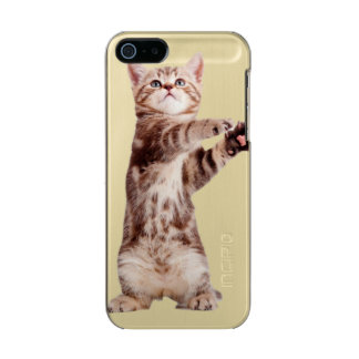 Standing cat - kitty - pet - feline - pet cat incipio feather® shine iPhone 5 case