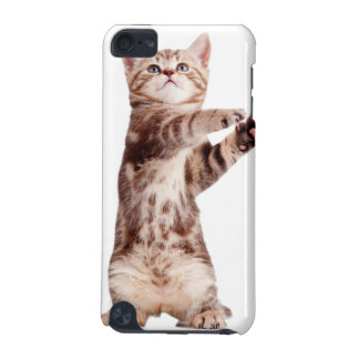 Standing cat - kitty - pet - feline - pet cat iPod touch (5th generation) cases