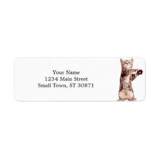 Standing cat - kitty - pet - feline - pet cat return address label