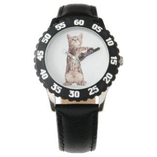Standing cat - kitty - pet - feline - pet cat watch