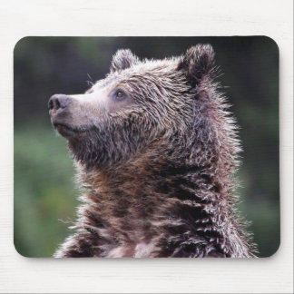 Standing Grizzly Bear Mouse Pad