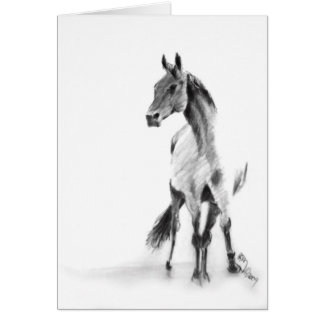 """Standing Horse"" Greeting Card"