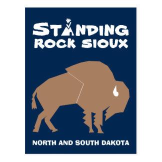 Standing Rock Sioux Postcard