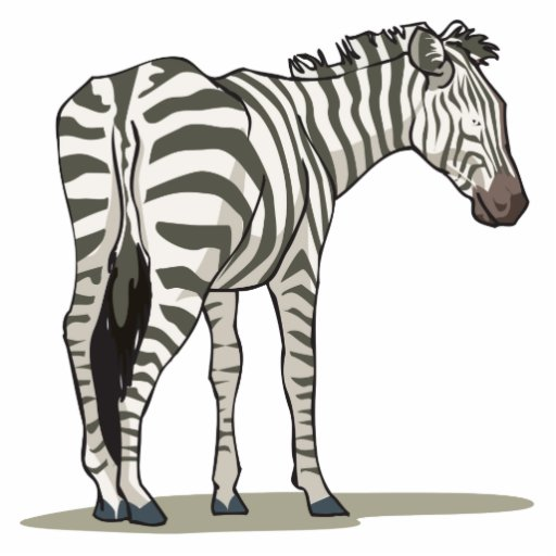 standing zebra graphic acrylic cut outs