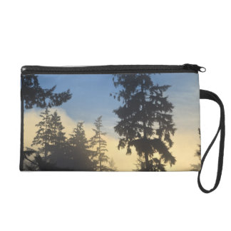 Stanley Park, woods, marine layer fog rolling in Wristlet